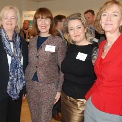 Irish Embassy Sweden launch event